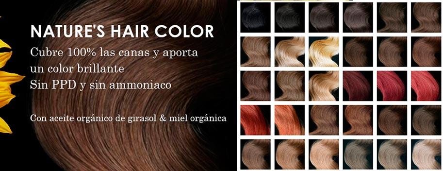 El efecto de los cabellos que se han reducido a cenizas por el aceite