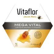 Vitaflor jalea real mega vital ampolla bebible 200 ml 20 amp
