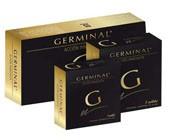GERMINAL  1 AMP.
